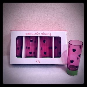 NEW Set of 4 Watermelon Shooters 2oz Shot Glasses